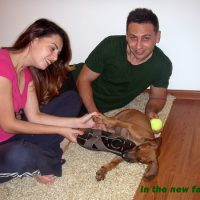 Lincoln_23 aka Sango in the new family