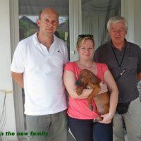 in the new family_Gregg