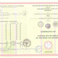 x_Certificate of origin 1
