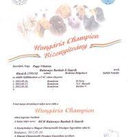 x_Hungarian Champion